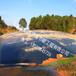 查看廣東始興沼氣池,黑膜沼氣池現場施工照片