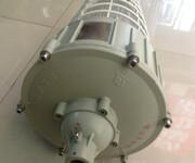 CCD92防爆照明灯,新黎明防爆灯图片