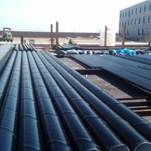 市政工程小区供暖用保温钢管厂家直销图片