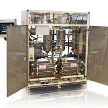 进口氢气发生器TELEDYNE进口氢气发生器德立台进口氢气发生器