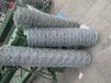 海南海口石笼网价格铅丝网笼规格尺寸圈地10%锌铝石笼网
