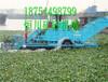 青州恒川割草船供应、怎么清理水葫芦