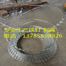 刺绳厂家专业生产刺绳镀锌刺绳刀片刺绳刺绳价格