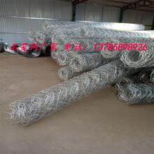 pvc包塑石笼网水利工程及堤坡防护专用产品