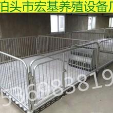 山东供应小猪保育床双体断奶猪保育栏厂家直销价格低图片