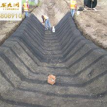 江西水土保护毯,聚酰胺三维护坡保护毯