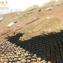 江西土工格室,河道护坡HDPE蜂巢土工格室