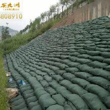 吉林生态袋,河道边坡绿化,抗潮湿耐腐蚀