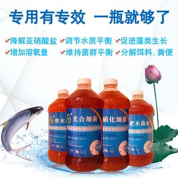 水产常用菌