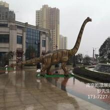南通恐龙模型出租HIGH到爆的仿真恐龙模型出租会动会叫的恐龙模型出租