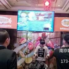 南京扬州低调奢华的vr出租百万海洋球乐园出租租赁了