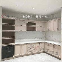 铝合金衣柜焊接大板整体全铝浴室柜全铝橱柜家具门板定制
