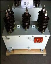 西安JLS-10油浸式计量箱报价图片
