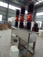 ZW7-40.5高压真空断路器价格图片