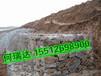 环巢湖的治理堤防用格宾网箱格宾石笼