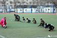 北京少儿足球培训-热爱足球的小伙伴看过来.