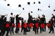 报考专科的考生没有学历限制
