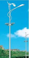 辽宁大连路灯厂家、吉林长春路灯杆厂家、黑龙江哈尔滨路灯杆厂家图片