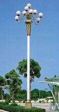 供应路灯、LED太阳能路灯、高杆灯、景观灯、庭院灯、监控杆图片