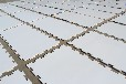 自产自销超高分子量聚乙烯溜冰场