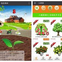 四川果园系统平台开发果园农场模式开发系统金融理财小游戏