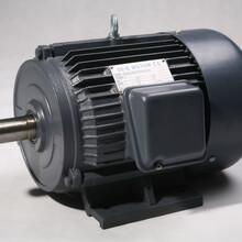 电机厂家直销三相230/460V电机