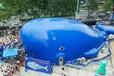 鯨魚氣模出租鯨魚島全新報價鯨魚島租賃價格鯨魚島出租