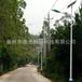 """建设""""美丽乡村""""道路照明工程6米太阳能路灯30W高亮LED路灯"""