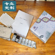 去氨加压素/1去氨基8右旋精氨酸加压素ELISA酶免试剂盒实验科研认可品牌图片