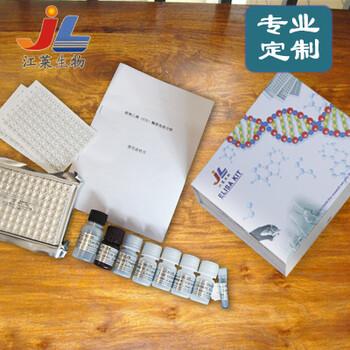 江莱生物UBE2I/UBC9/UBCE9试剂盒(多种属)实验说明书