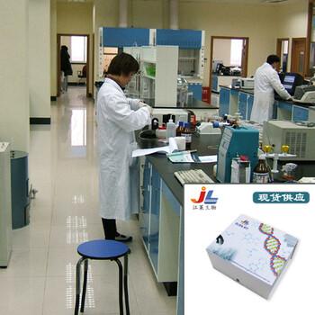 江莱生物半胱氨酸天冬氨酸特异性蛋白酶9酶联免疫试剂盒