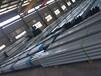 赤峰鋼承板生產廠家YXB51-250-750