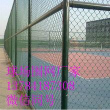 足球场围栏-厂家供应球场勾花网编织网绿色包胶铁丝网