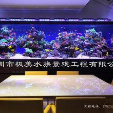 大型亚克力鱼缸定制、鱼缸维护与保养、水母缸定制