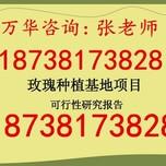 郑州经开区港区代写中小学校可行性报告187-3817-3828图片