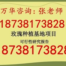 衢州立项可行性研究报告图片