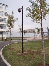 长春监控杆,信号灯杆,标志杆,龙门架厂家,生产厂家图片
