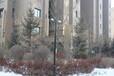 哈爾濱監控桿,信號燈桿,標志桿,龍門架廠家,生產廠家