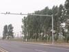 供應哈爾濱電警桿,信號燈桿,路燈桿,監控桿廠家