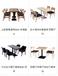 廠家供應實木餐桌椅,大理石臺面餐桌椅,防火板臺面餐桌椅