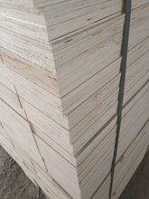 高密木箱制作用LVL板条木方免熏蒸