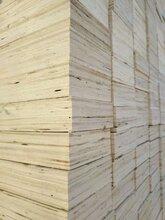 山东免熏蒸包装板LVL木方图片价格