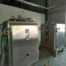 二手5平方不锈钢冷冻干燥机、二手东富龙干燥机,二手低温干燥机图片
