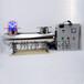 紫外线灭菌消毒器厂家直供JM-UVC-450