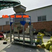 玉米装袋专用计量包装机玉米定量包装机图片