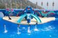 香港海洋公園+迪士尼雙園歡樂游超值480元