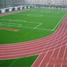 东莞塑胶跑道-球场跑道-硅PU球场施工-东莞鸿宇体育设施