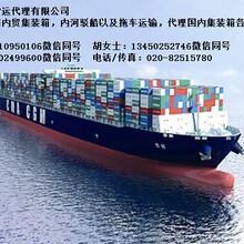 上海到广东汕尾的海运内贸公司