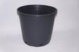供应加仑盆,育苗盆,育苗容器,塑料花盆(1-30)—博菲特专业生产