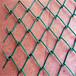 廠家定制體育球場防護勾花網鍍鋅鐵絲菱形勾花網綠色圍欄勾花網
